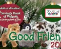 good friend 2015  dl copy